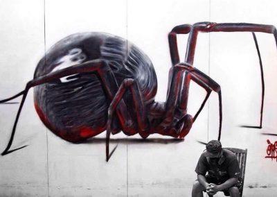 113-spider-street-art-mural